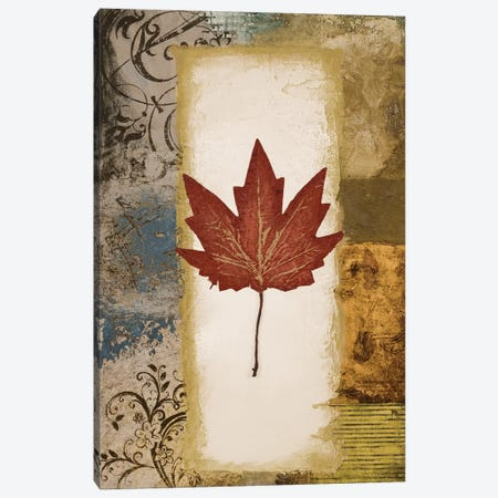 Single Leaf III Canvas Print #MMC127} by Michael Marcon Canvas Art