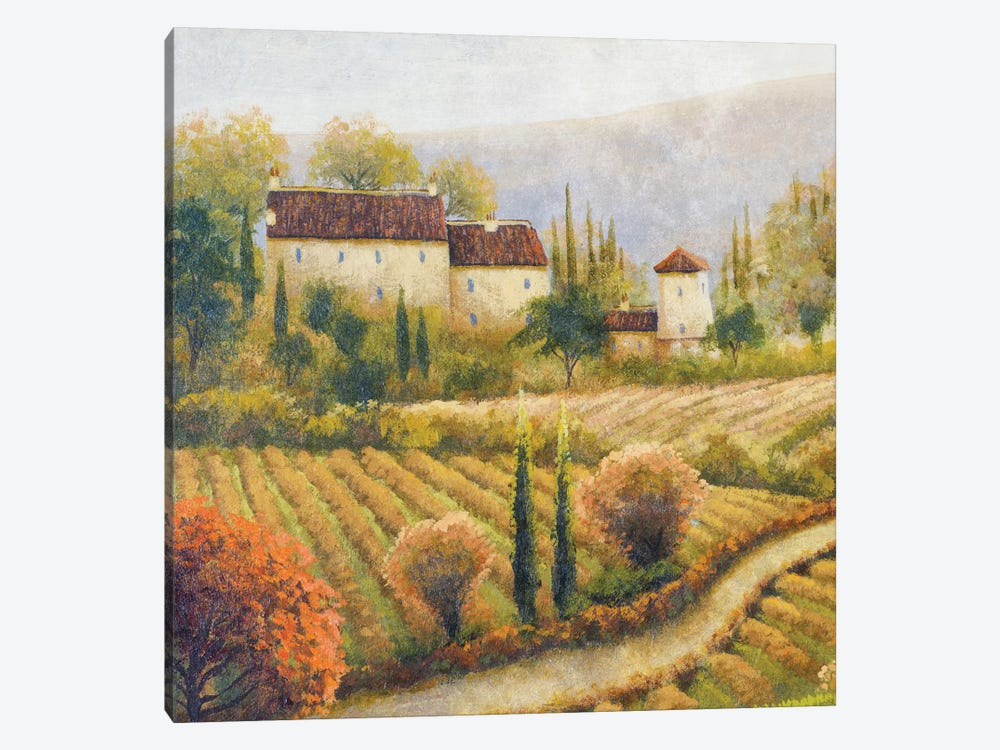 Tuscany Vineyard I 1-piece Canvas Print