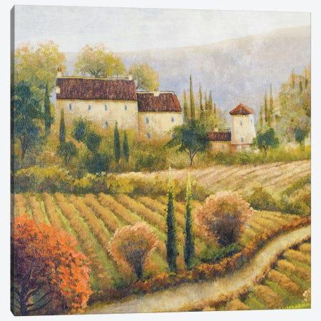 Tuscany Vineyard I Canvas Print #MMC147} by Michael Marcon Canvas Wall Art