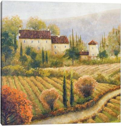 Tuscany Vineyard I Canvas Art Print