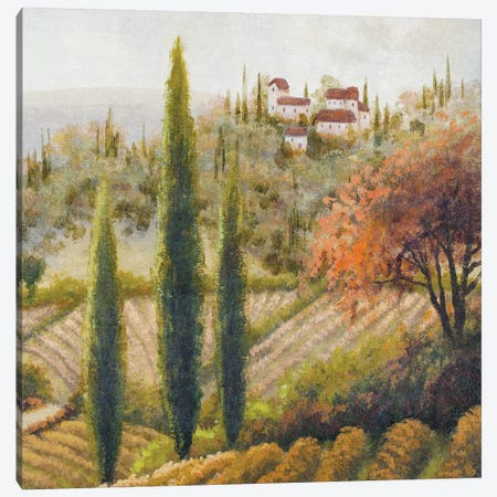Tuscany Vineyard II Canvas Print #MMC148} by Michael Marcon Canvas Print