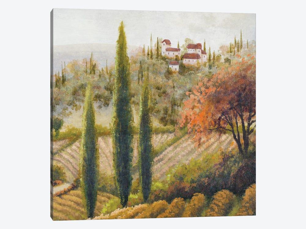 Tuscany Vineyard II by Michael Marcon 1-piece Canvas Wall Art