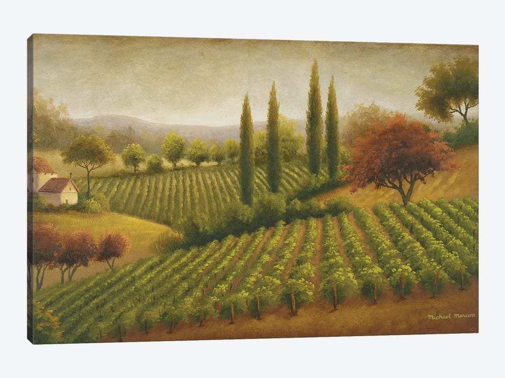 Vineyard In The Sun I by Michael Marcon 1-piece Canvas Print