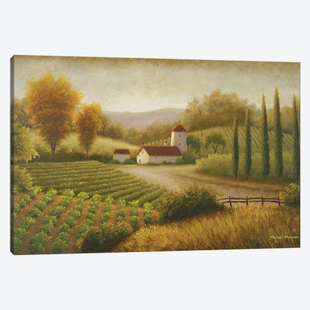 Vineyard In The Sun II Canvas Print #MMC150} by Michael Marcon Canvas Wall Art