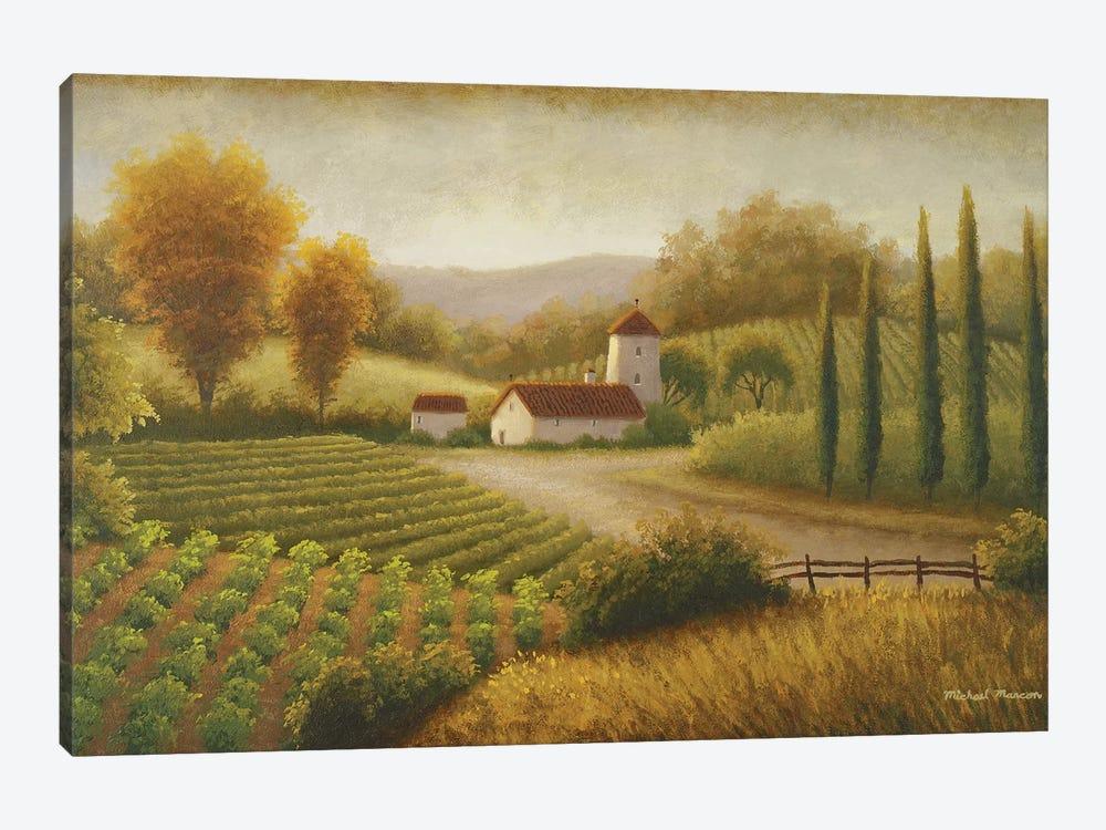 Vineyard In The Sun II by Michael Marcon 1-piece Art Print