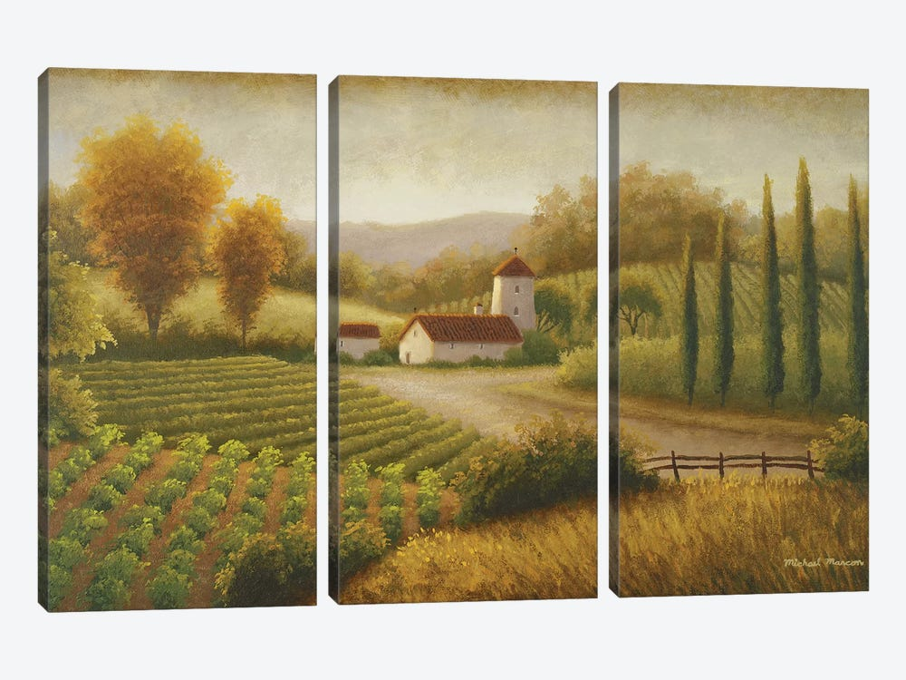 Vineyard In The Sun II by Michael Marcon 3-piece Canvas Print