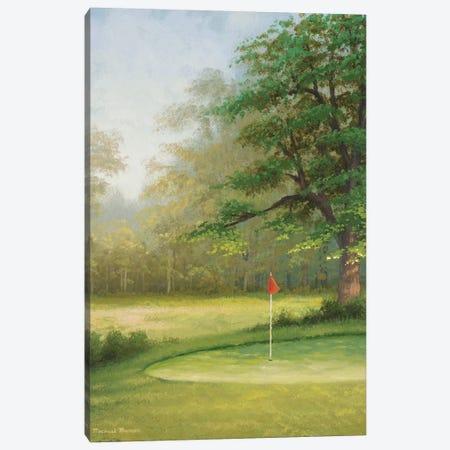 Amacoy Green II Canvas Print #MMC15} by Michael Marcon Canvas Art