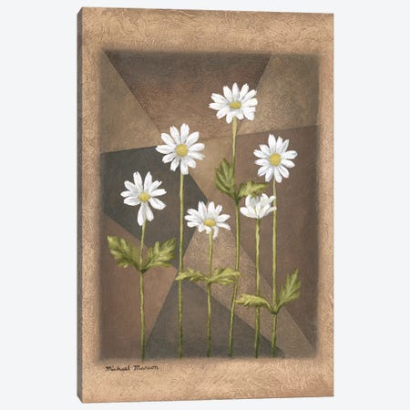 White Daisies Canvas Print #MMC161} by Michael Marcon Art Print
