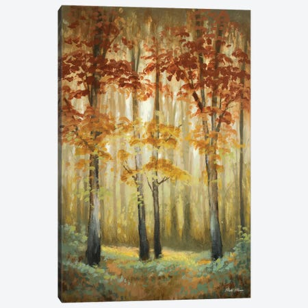 Woodland Glow I Canvas Print #MMC163} by Michael Marcon Canvas Print