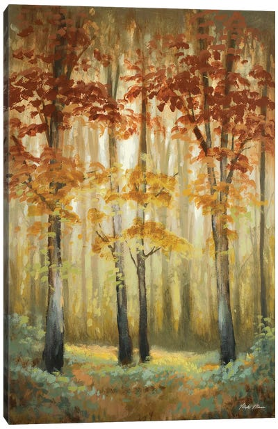 Woodland Glow I Canvas Art Print