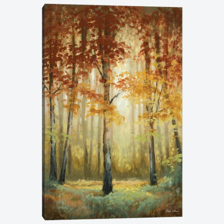 Woodland Glow II Canvas Print #MMC164} by Michael Marcon Canvas Art