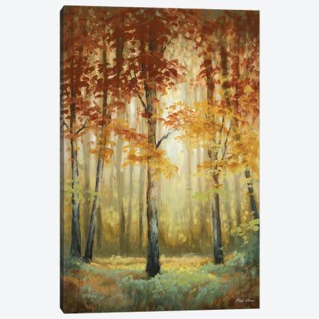 Woodland Glow II Canvas Print #MMC164} by Michael Marcon Canvas Art