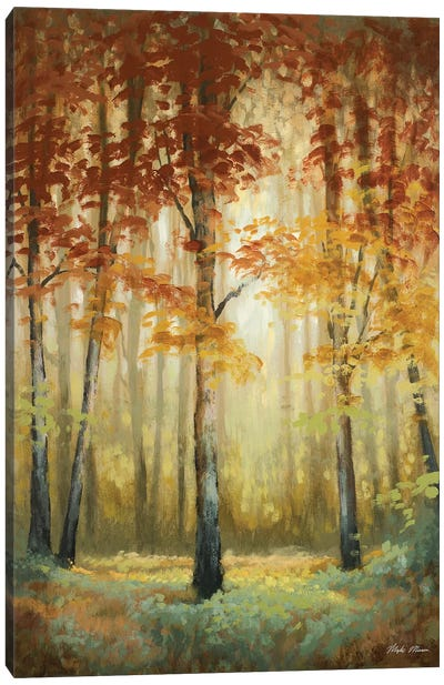 Woodland Glow II Canvas Art Print