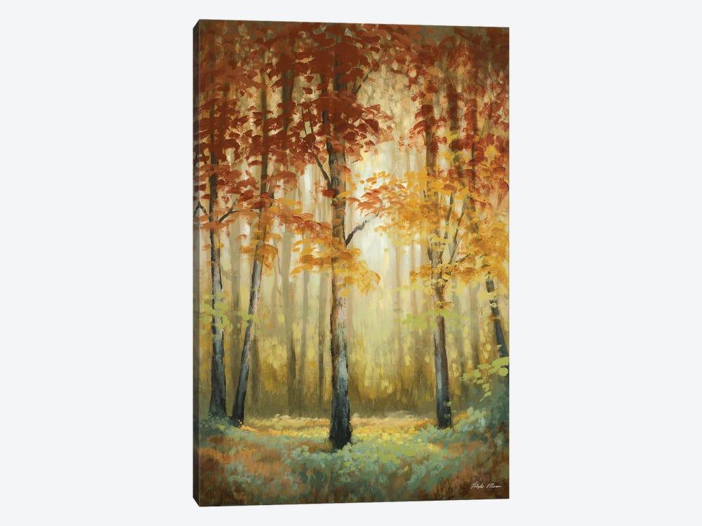 Woodland Glow II by Michael Marcon 1-piece Canvas Artwork
