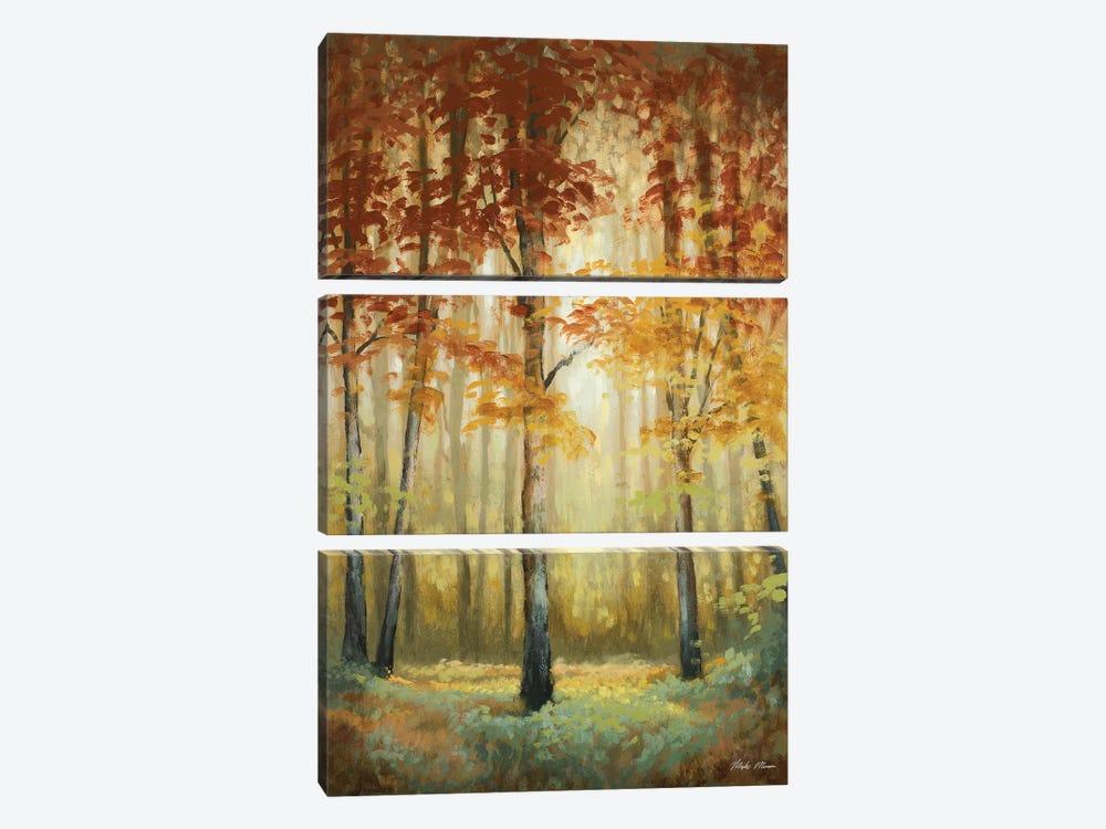 Woodland Glow II by Michael Marcon 3-piece Canvas Art
