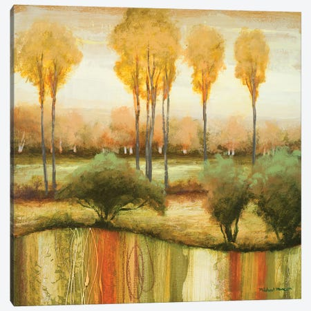 Early Morning Meadow II Canvas Print #MMC167} by Michael Marcon Canvas Artwork