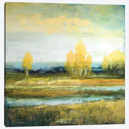 Marsh Lands I Canvas Print #MMC168} by Michael Marcon Art Print
