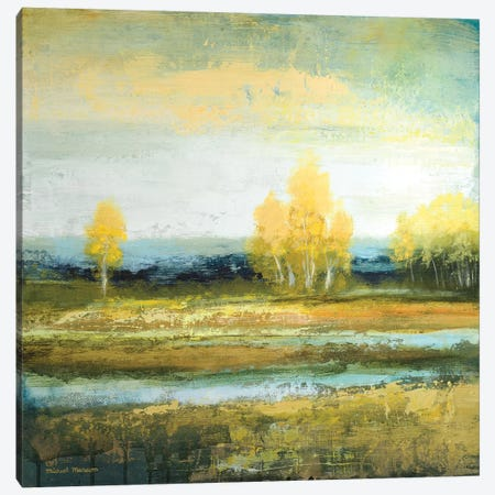 Marsh Lands I 3-Piece Canvas #MMC168} by Michael Marcon Art Print