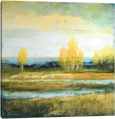 Marsh Lands I Canvas Art Print