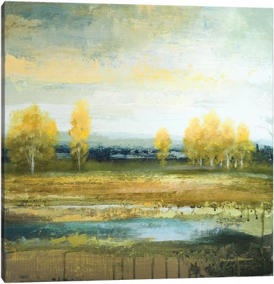 Marsh Lands II Canvas Art Print