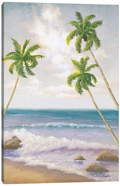 Atlantic Seaside II Canvas Art Print