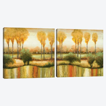 Early Morning Meadow Diptych Canvas Print Set #MMC2HSET002} by Michael Marcon Canvas Art Print