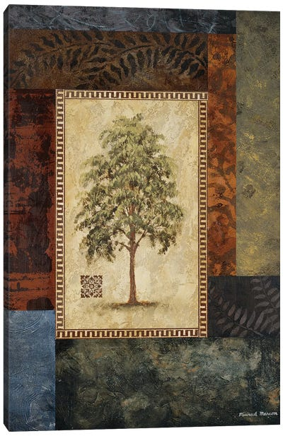Eucalyptus Tree I Canvas Art Print