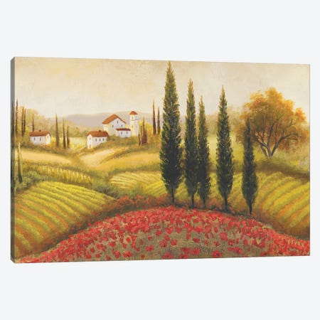 Flourishing Vineyard II Canvas Print #MMC60} by Michael Marcon Canvas Wall Art
