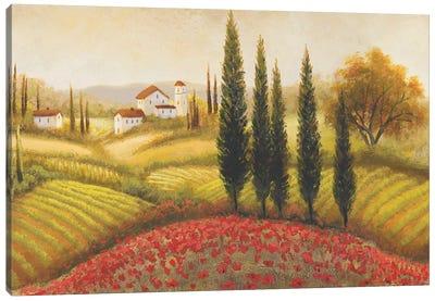 Flourishing Vineyard II Canvas Art Print