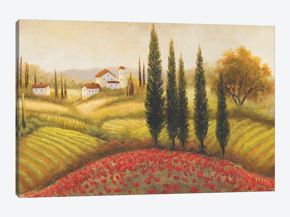 Flourishing Vineyard II by Michael Marcon 1-piece Canvas Art
