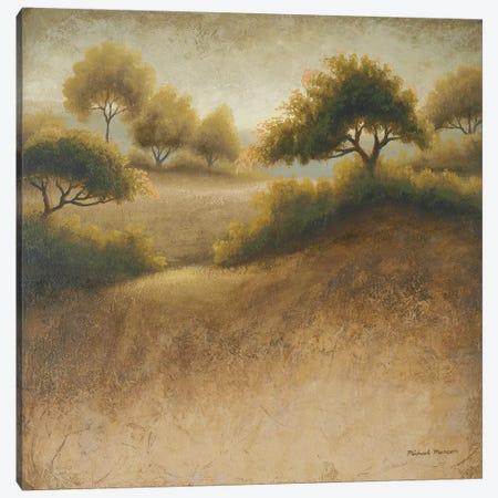 Iowa Dream Canvas Print #MMC79} by Michael Marcon Canvas Art Print