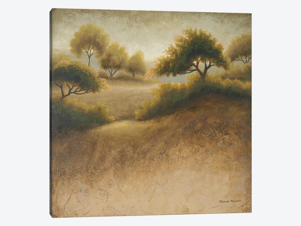 Iowa Dream by Michael Marcon 1-piece Canvas Art