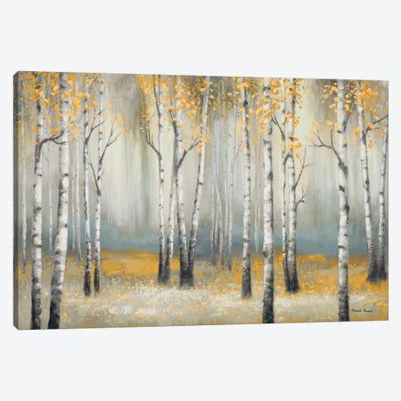 Golden September Birch Canvas Print #MMC7} by Michael Marcon Canvas Print