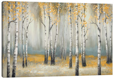 Golden September Birch Canvas Art Print