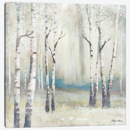 Watercolor December Birch I Canvas Print #MMC8} by Michael Marcon Canvas Wall Art