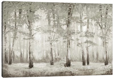 Misty Woodland Glow Canvas Art Print