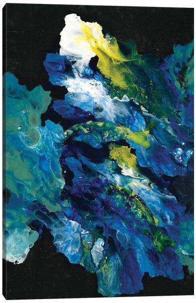 Movement In The Dark Canvas Art Print