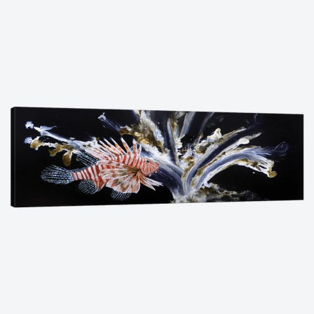 The Lionfish Canvas Print #MME26} by Michelle Angella Meijs Canvas Art Print