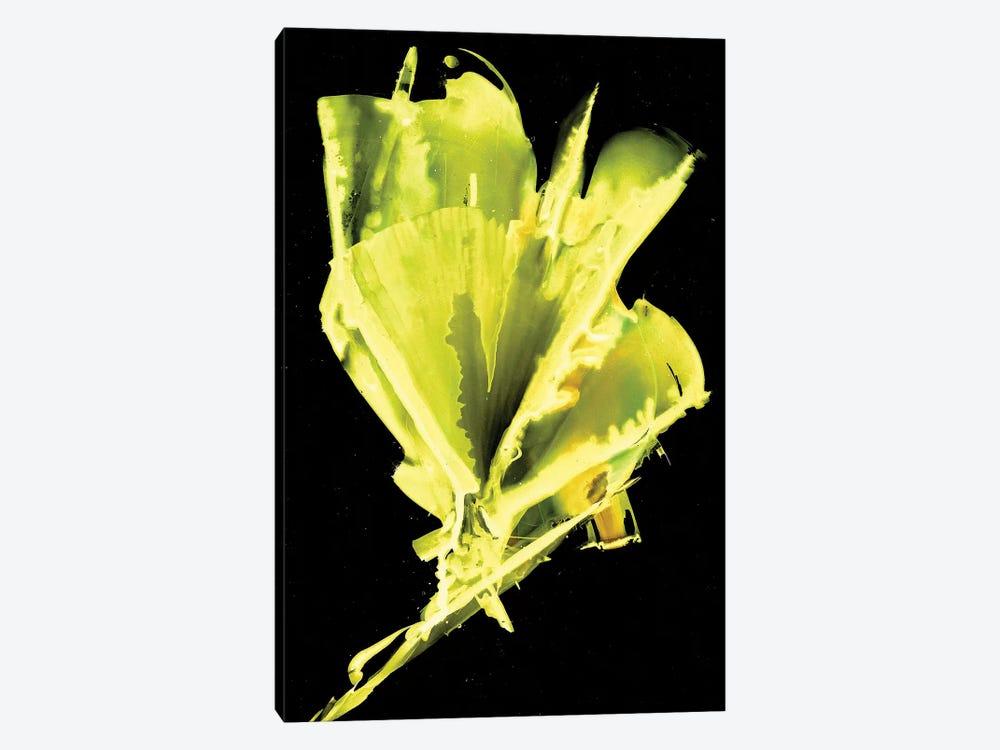 Burst Of Green by Michelle Angella Meijs 1-piece Canvas Art Print