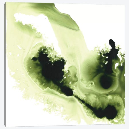 Greener Expression Canvas Print #MME8} by Michelle Angella Meijs Canvas Artwork