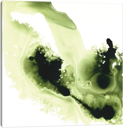 Greener Expression Canvas Art Print