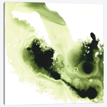 Greener Expression 3-Piece Canvas #MME8} by Michelle Angella Meijs Canvas Artwork
