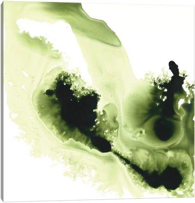 Greener Expression Canvas Art Print