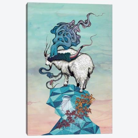 Seeking New Heights Canvas Print #MMI19} by Mat Miller Art Print
