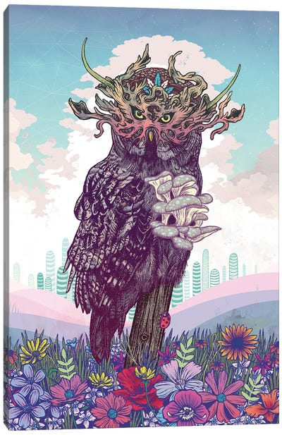 Journeying Spirit (Owl) Canvas Art Print