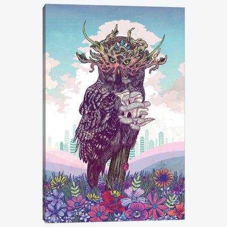 Journeying Spirit (Owl) Canvas Print #MMI36} by Mat Miller Canvas Artwork