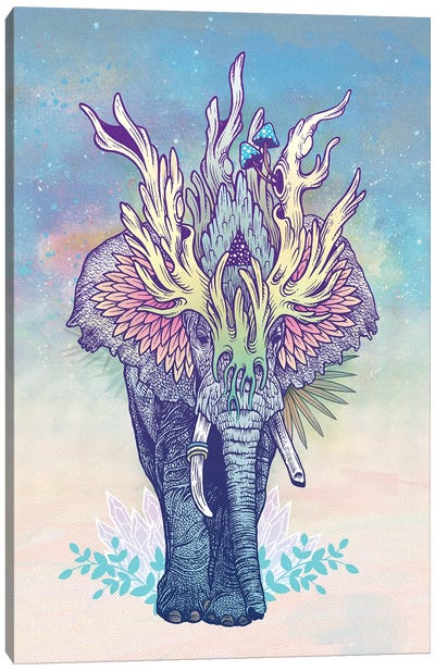Spirit Elephant Canvas Art Print
