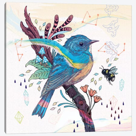 Bluetail Canvas Print #MMI49} by Mat Miller Canvas Art
