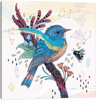 Bluetail Canvas Art Print