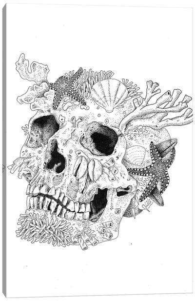 Aqua Skull Canvas Art Print